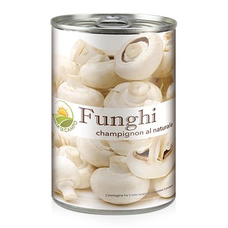Sacam-funghi-FUO00