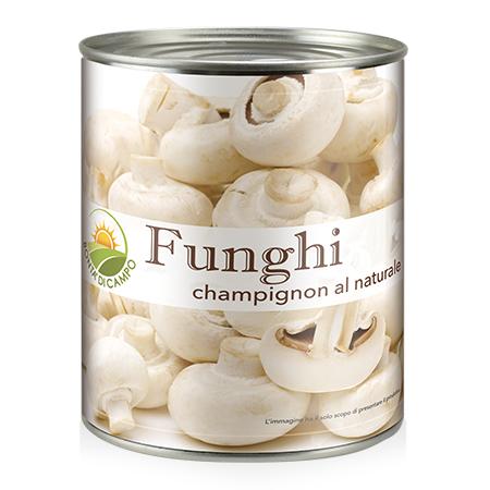 Sacam-funghi-FUO10