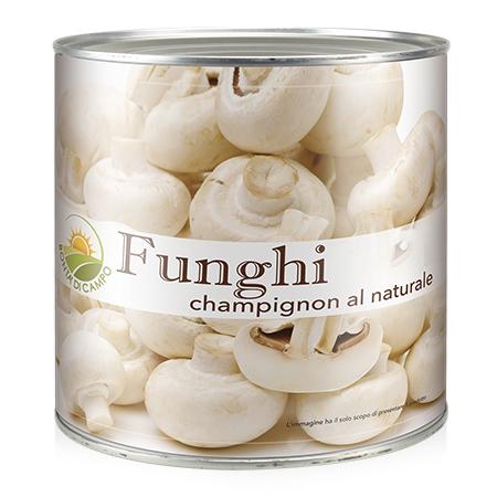 Sacam-funghi-FUO20